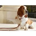 Kvalitní Kožený obojek na psa Hurtta-největší výběr obojků v Liberci