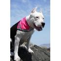 Reflexní šátek pro psa Hurtta