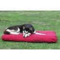 Matrace pro psa Dogmans Runway 100-red s alaskanem