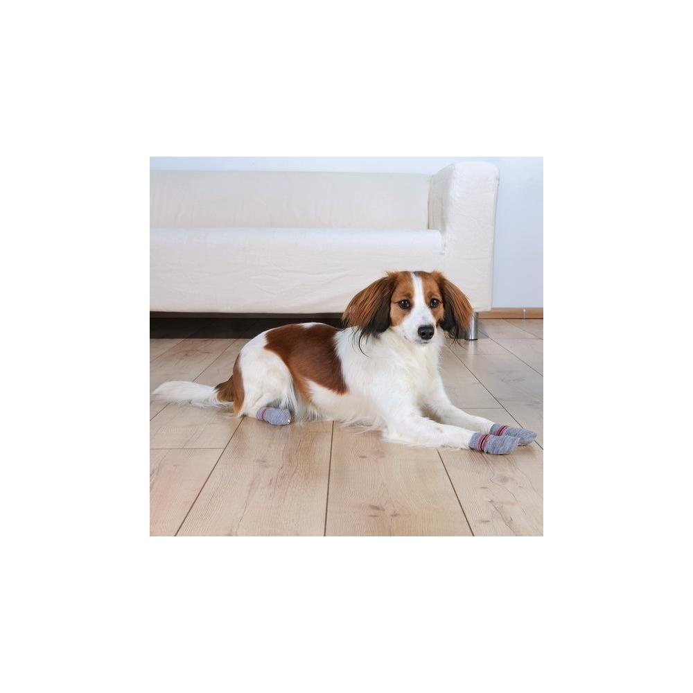Psí ponožky Trixie