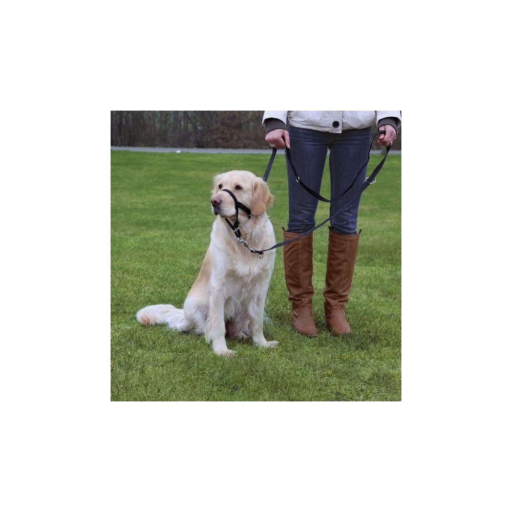 Výcviková ohlávka na psa Top Trainer Trixie