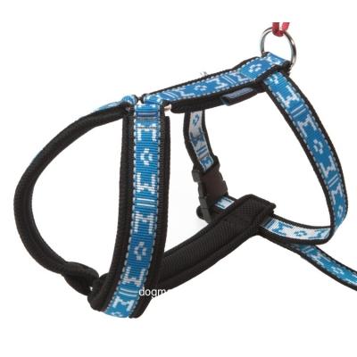 ManMat postroj pro psa dog trakking Guard modrý