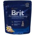 krmení pro kotě Brit Cat Premium Kitten 800g