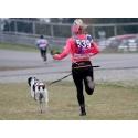 Manmat Canicross opasek běhání se psem Dogmans
