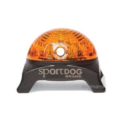SportDog Beacon světýlko Blikačka pro psa oranžová