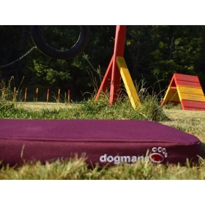 Matrace pro psa Dogmans Runway fialová