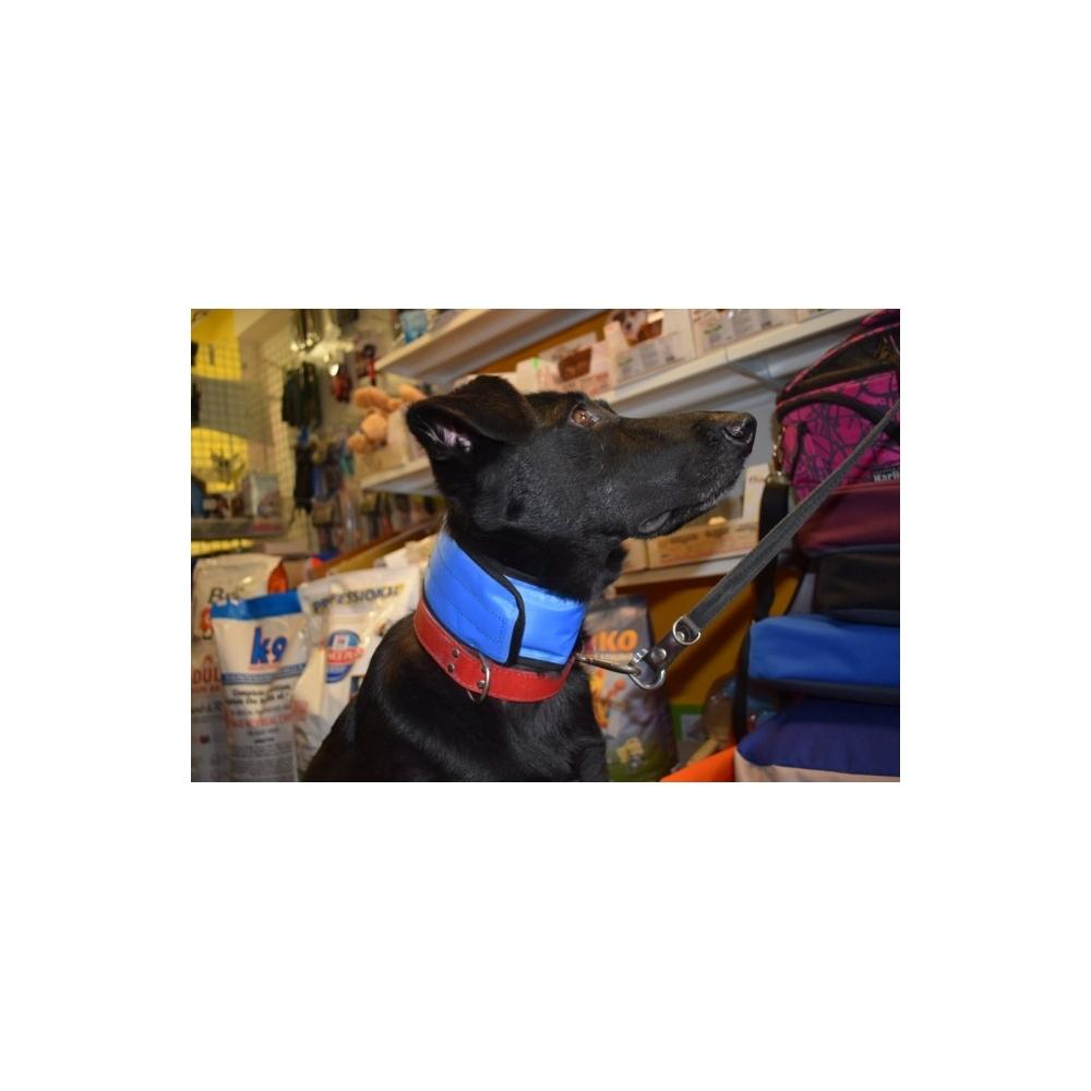 Chladící obojek pro psa na léto v obchod Dogmans Liberec