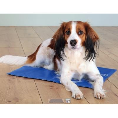 Chladící podložka pro psy 90 x 50 cm