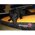 Matrace pro psa Dogmans Soft Runway 120cm Výroba Liberec
