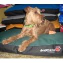 Matrace pro psa Dogmans Runway 150
